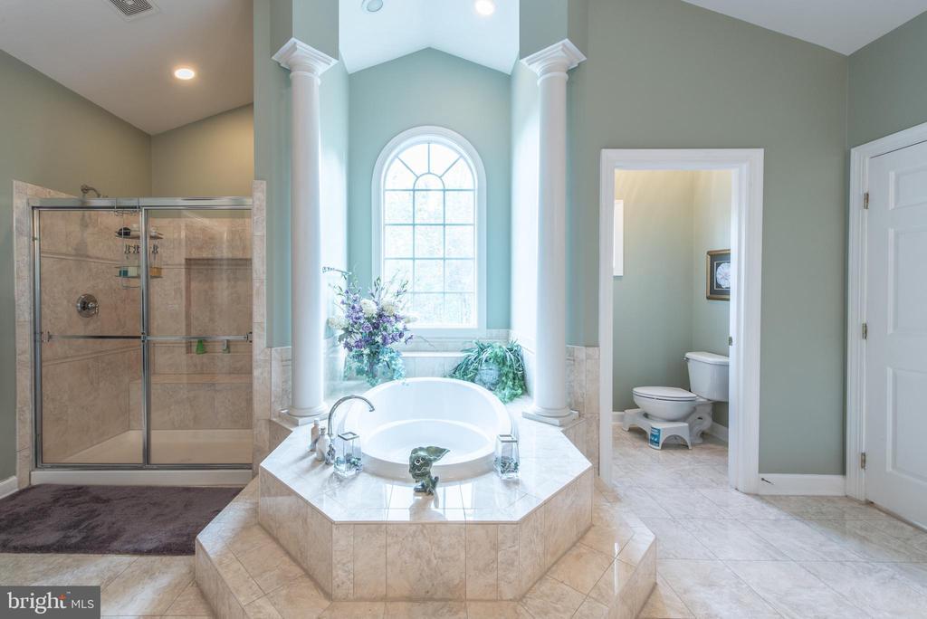 Jacuzzi tub & shower - 27531 PADDOCK TRAIL PL, CHANTILLY