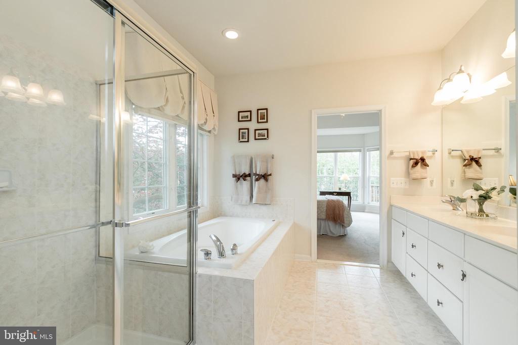 Master Bath - 43777 PARAMOUNT PL, CHANTILLY