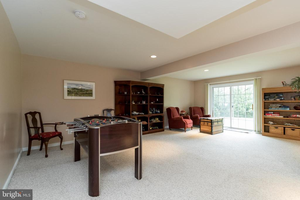 Lower Level Game Area - 43777 PARAMOUNT PL, CHANTILLY