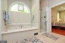 Master bath with garden tub and separate shower - 9600 TERRI DR, LA PLATA