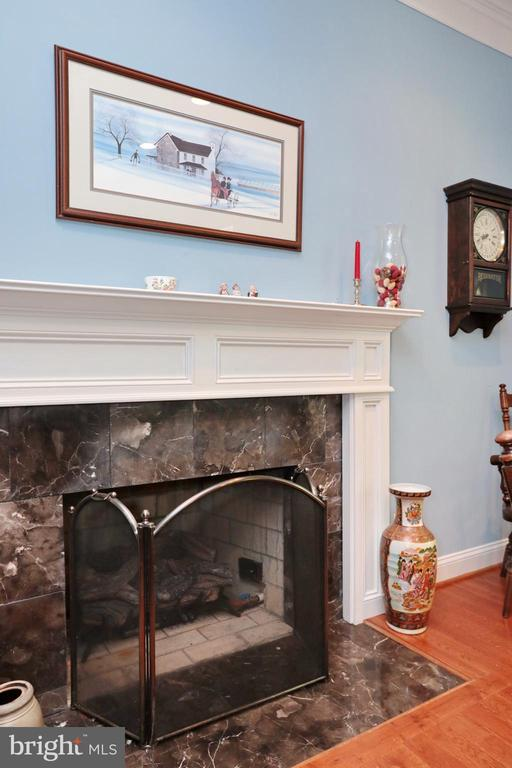 Wood burning fireplace with useable gas line - 9600 TERRI DR, LA PLATA
