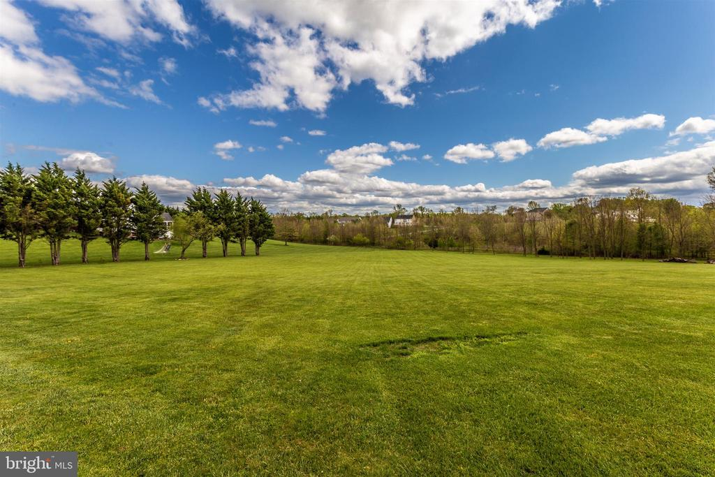 Backyard View - 3639 WHEAT MILLER DR, MOUNT AIRY