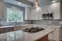 Gorgeous Silestone counters and new cabinetry - 26022 GLASGOW DR, CHANTILLY