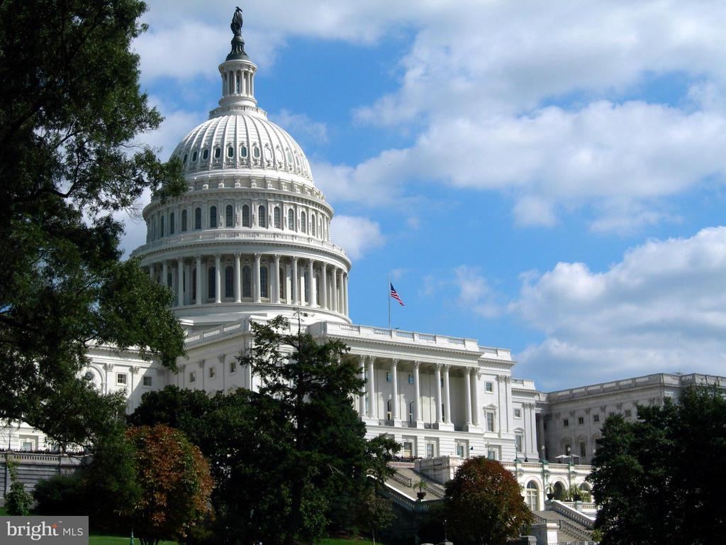 U.S. Capitol -- it's your neighborhood! - 8 BROWNS CT SE, WASHINGTON