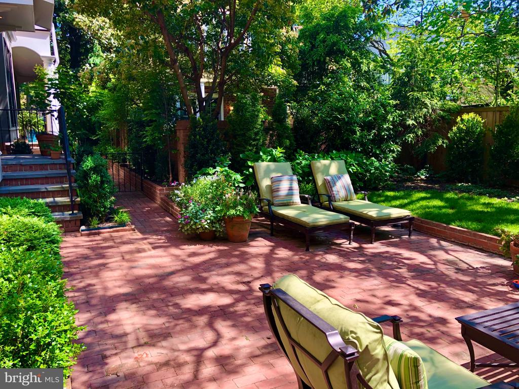 Main Patio and Garden - 412 WOLFE ST, ALEXANDRIA