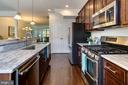 Granite counters, wide/deep sink & double pantry - 116 WATERLINE CT, ANNAPOLIS