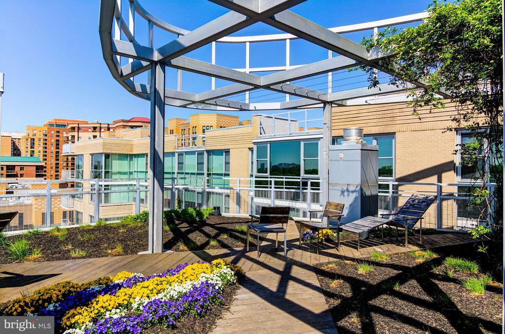 Beautiful Shared Rooftop Terrace - 3409 WILSON BLVD #504, ARLINGTON