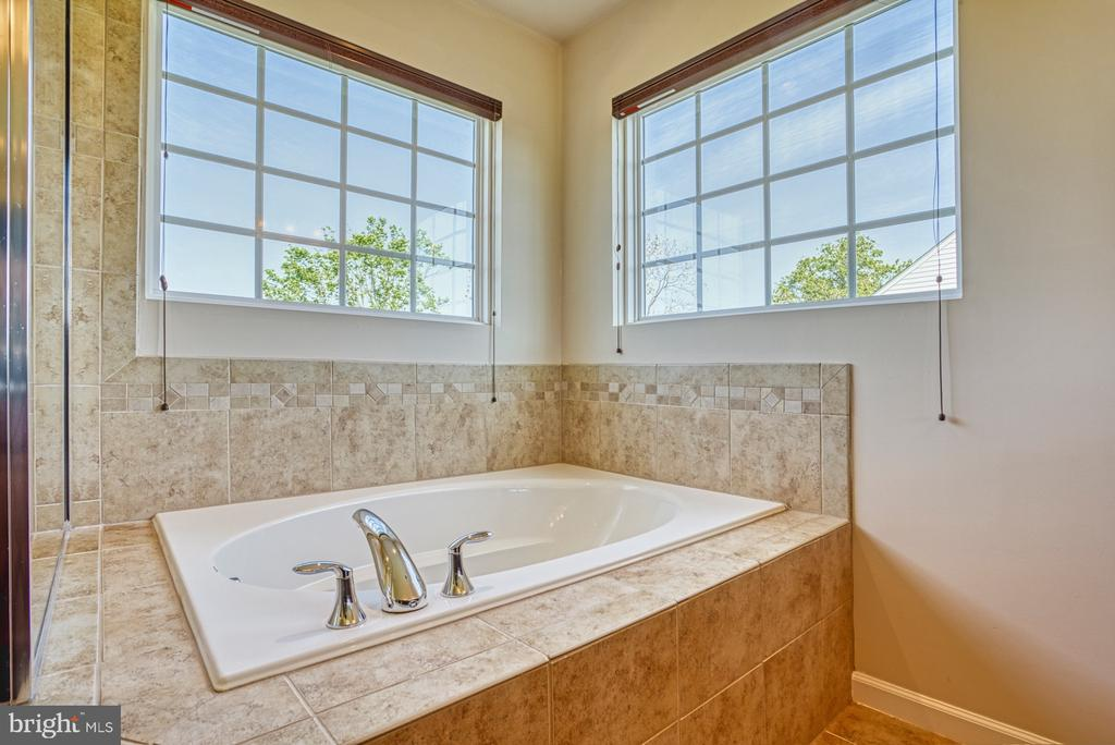 Soaking Tub Master Bath - 17663 HAMILTON HEIGHTS CT, HAMILTON