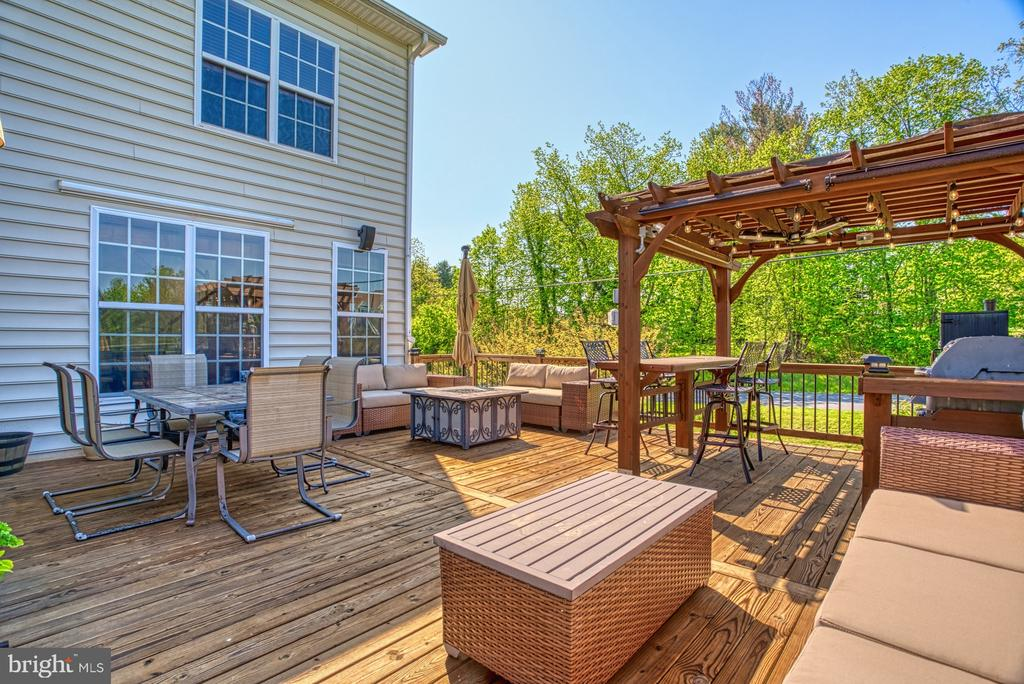 Amazing Deck - 17663 HAMILTON HEIGHTS CT, HAMILTON