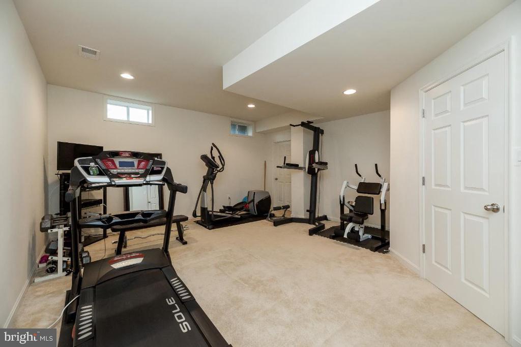 LL bonus room/gym/guest BR (NTC) - 42426 IBEX DRIVE, STERLING