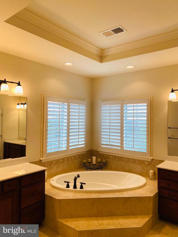 Gorgeous master suite w Tray ceiling and Roman tub - 42426 IBEX DRIVE, STERLING