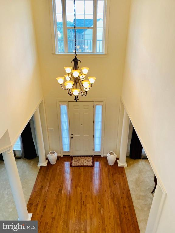 Two story foyer with HW floors and picture window - 42426 IBEX DRIVE, STERLING