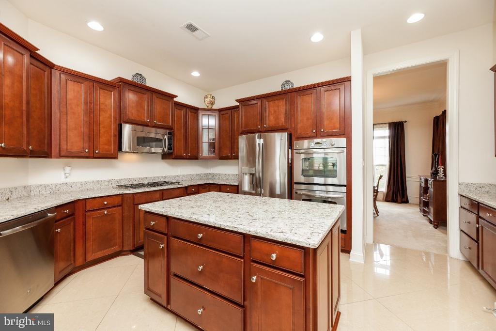 New granite counter tops in this gourmet kitchen - 42426 IBEX DRIVE, STERLING