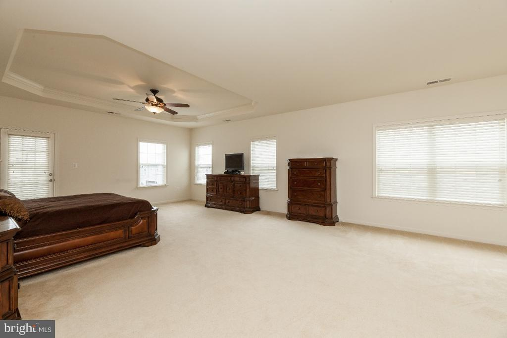 Spacious Master BR w Tray ceiling and sitting room - 42426 IBEX DRIVE, STERLING