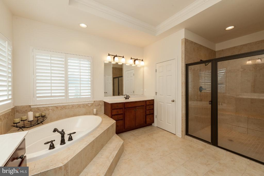 Expansive walk-in glass shower w custom tile - 42426 IBEX DRIVE, STERLING