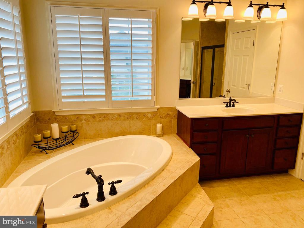 Custom Plantation Shutters adorn the windows - 42426 IBEX DRIVE, STERLING