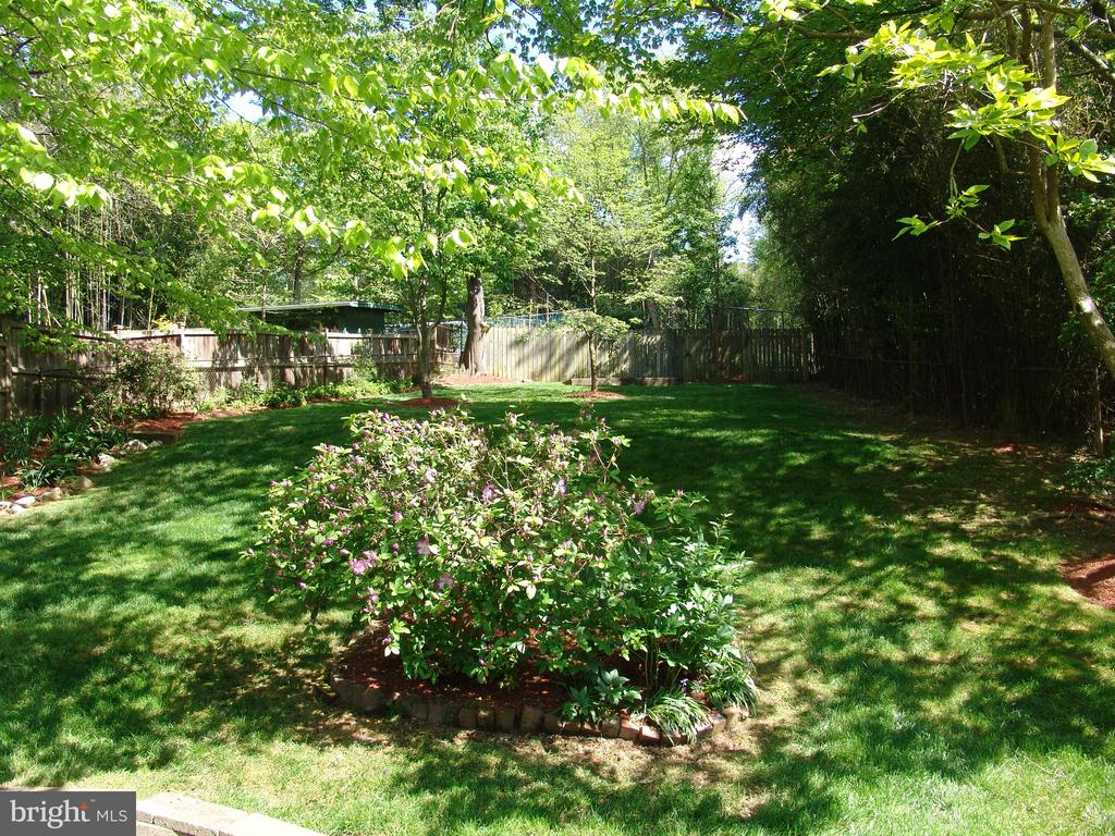 Large Back Yard - 4004 DENFELD AVE, KENSINGTON