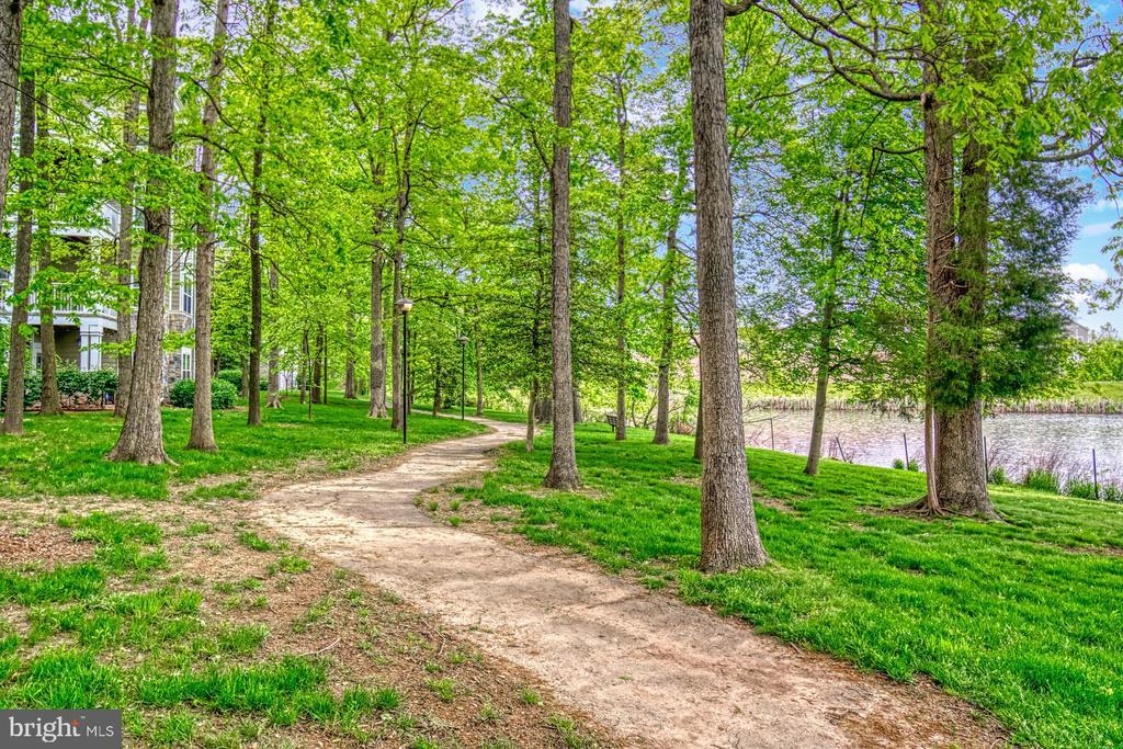 Walking Path around the lake - 1720 LAKE SHORE CREST DR #34, RESTON