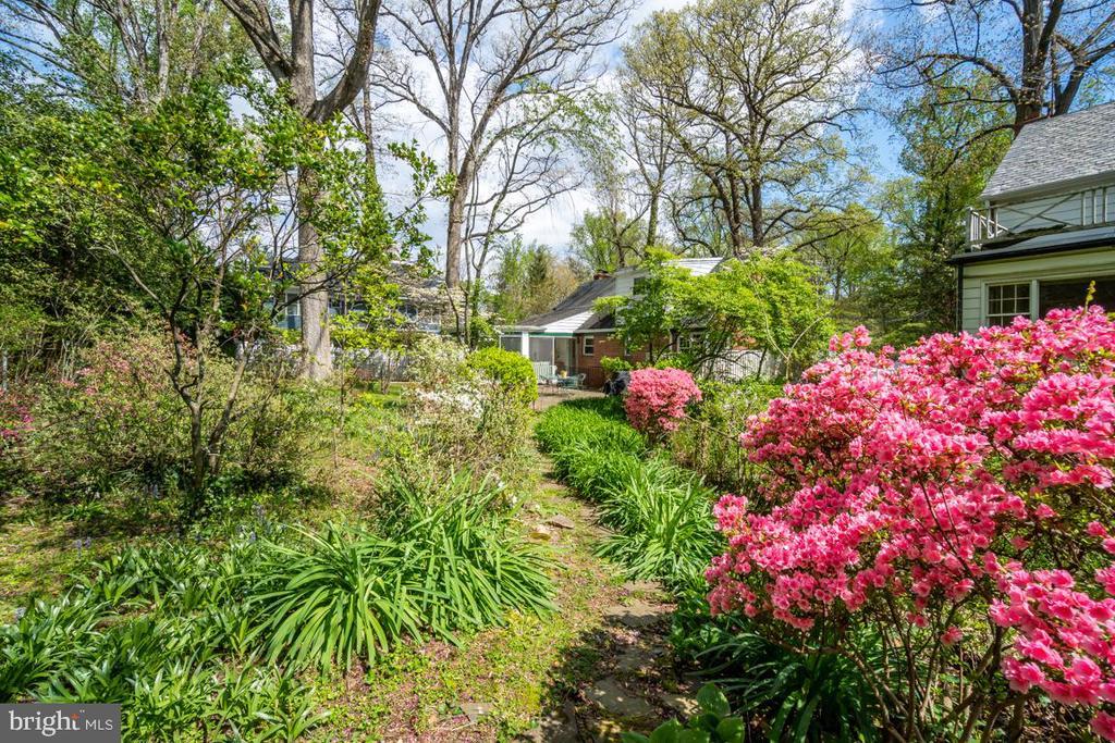 Backyard garden with gorgeous, extensive plantings - 5824 BRADLEY BLVD, BETHESDA