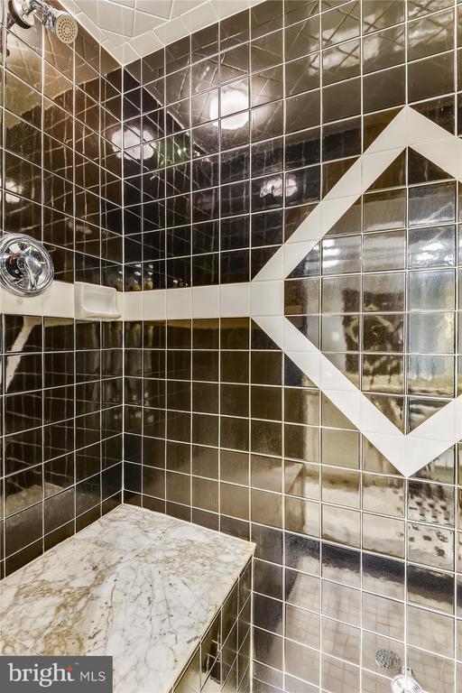 Lower Level full bath w/ steam shower - 236 MOUNTAIN LAUREL LN, ANNAPOLIS