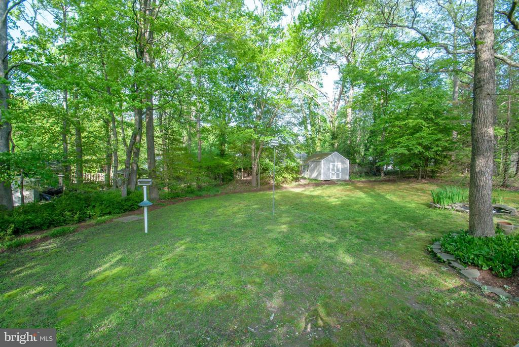 shady garden and back yard - 449 POPLAR LN, ANNAPOLIS