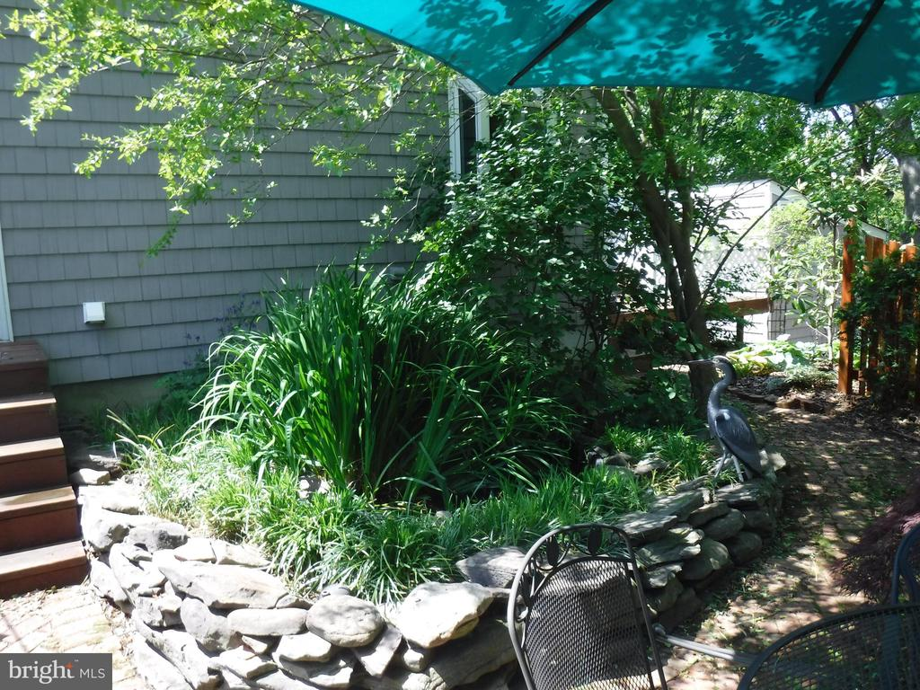 Pond in backyard - 1127 SHORT ST, ANNAPOLIS