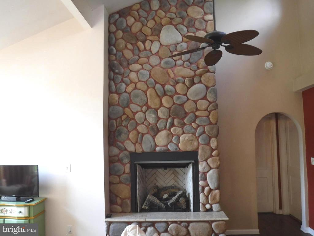 Natural Gas Fireplace in Living Room - 1127 SHORT ST, ANNAPOLIS