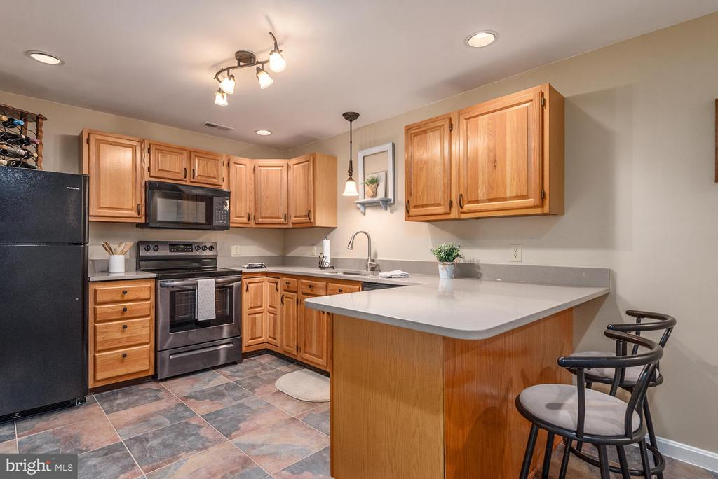 Lower level kitchen with Italian Quartz counters. - 325 SANDY RIDGE RD, FREDERICKSBURG