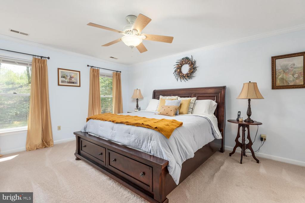 Master has room to spare and ceiling fan. - 325 SANDY RIDGE RD, FREDERICKSBURG