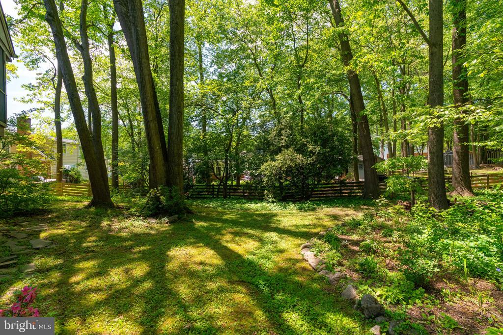 Backyard - 3634 CAMELOT DR, ANNANDALE