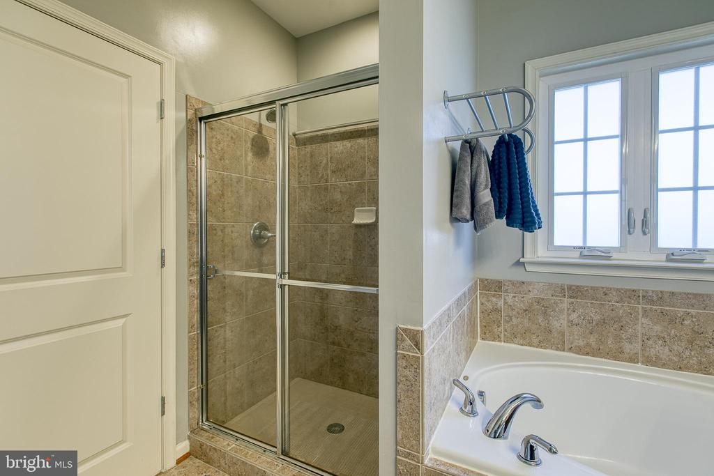 Large shower with glass doors in Master Bathroom. - 214 WOODSTREAM BLVD, STAFFORD