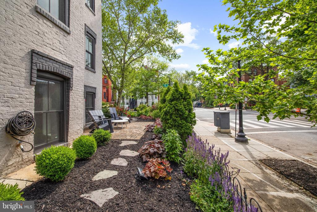Front garden - 1600 15TH ST NW, WASHINGTON