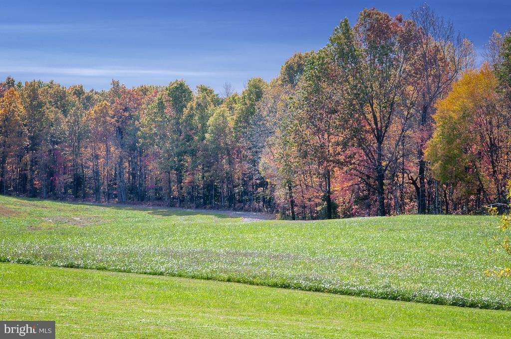 Fall on the farm - 2921 DUCKER DR, LOCUST GROVE