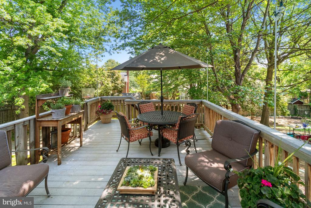 Large deck for entertaining - 1065 PALMER PL, ALEXANDRIA