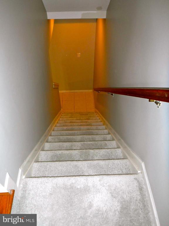 Stairs from Main Level to basement, new carpet - 12062 ETTA PL, BRISTOW