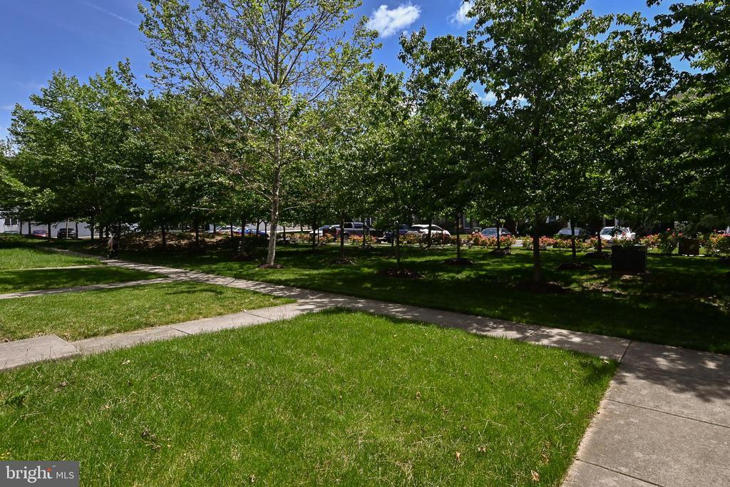 Front with plenty of guest parking behind trees - 22944 ROSE QUARTZ SQ, BRAMBLETON