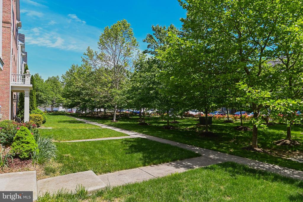 Plenty of trees for privacy - 22944 ROSE QUARTZ SQ, BRAMBLETON