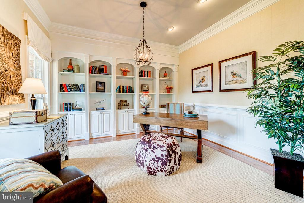 Built-in book shelves and designer details - 14732 RAPTOR RIDGE WAY, LEESBURG