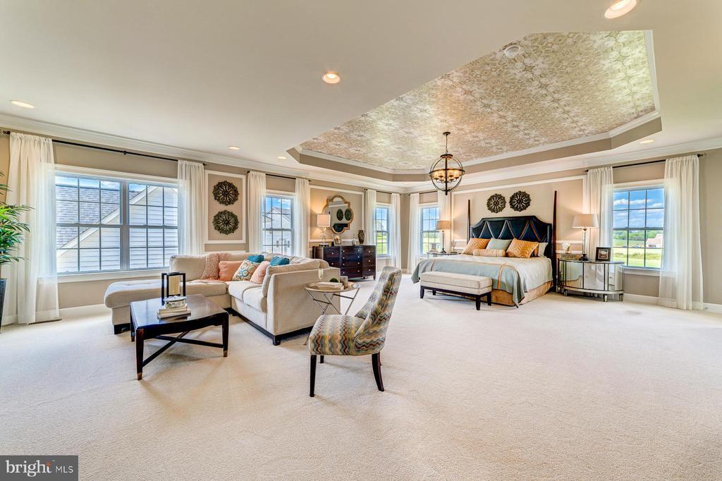 Grand owner's suite is a haven! - 14732 RAPTOR RIDGE WAY, LEESBURG