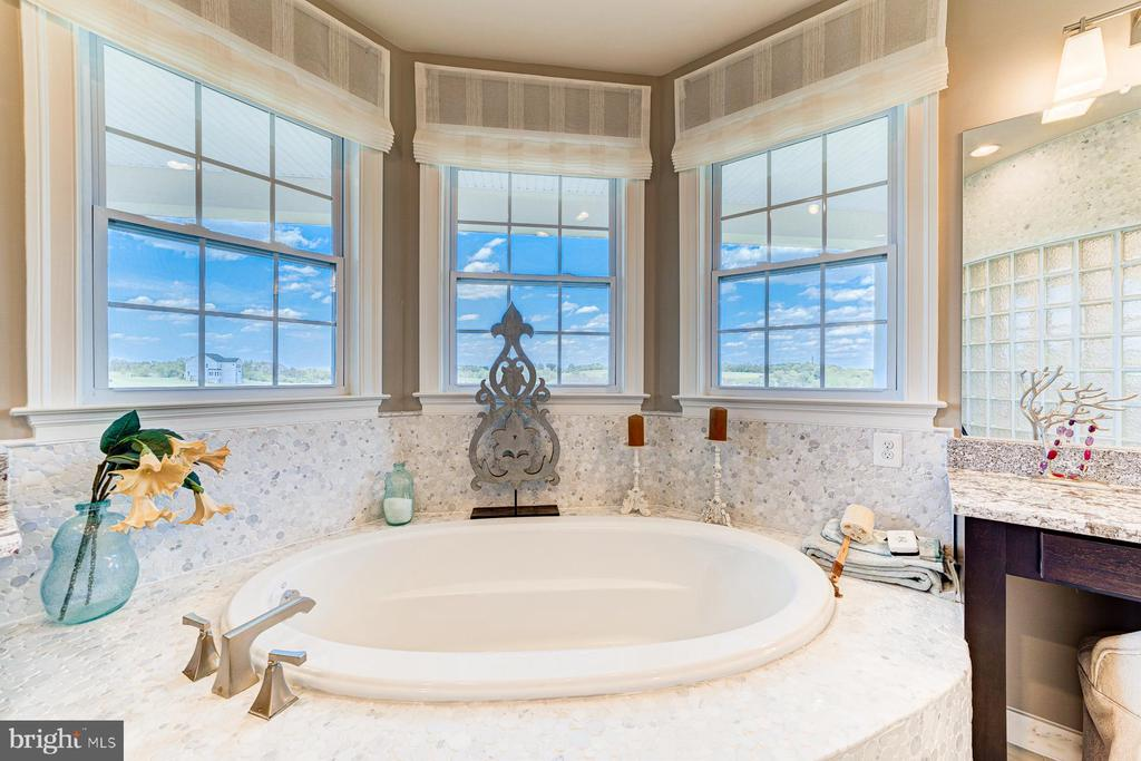 Luscious soaking tub! - 14732 RAPTOR RIDGE WAY, LEESBURG