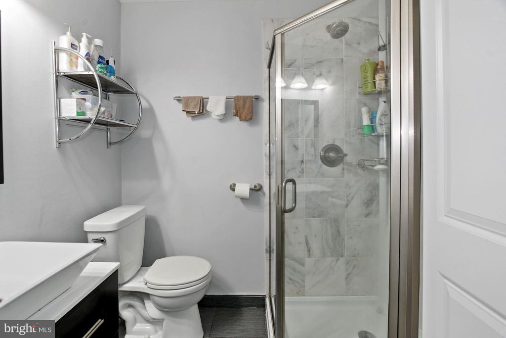 En-Suite Master Bathroom (2 of 2) - 10100 LITTLE POND PL #1, MONTGOMERY VILLAGE
