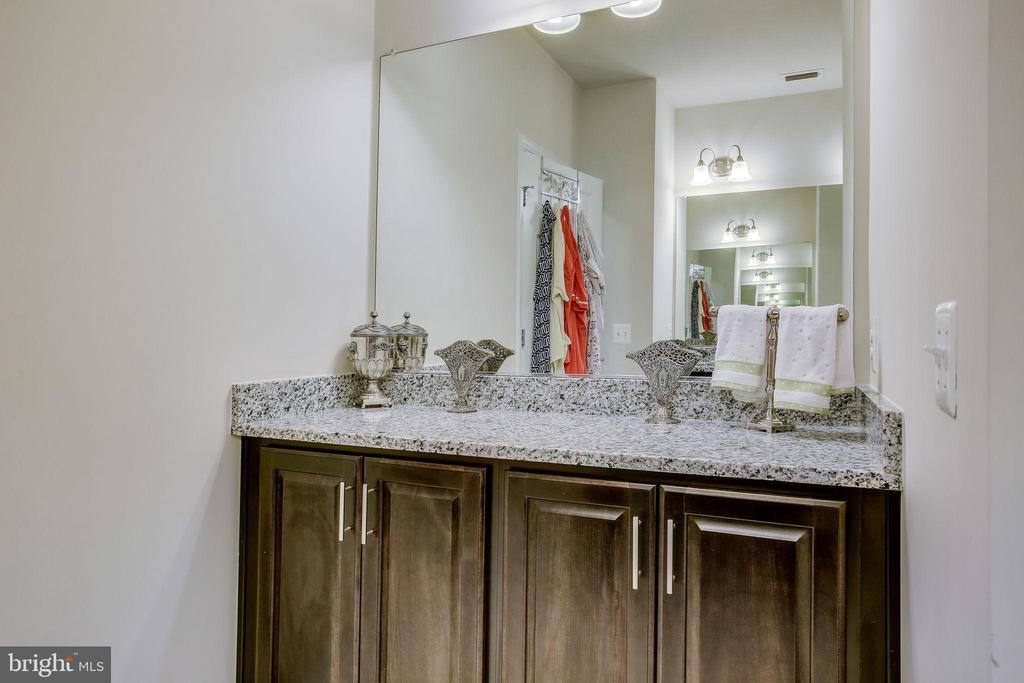 Additional Designer Dry Sink - An Upgrade - 20505 LITTLE CREEK TER #203, ASHBURN