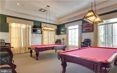 Billiard Room - 20505 LITTLE CREEK TER #203, ASHBURN