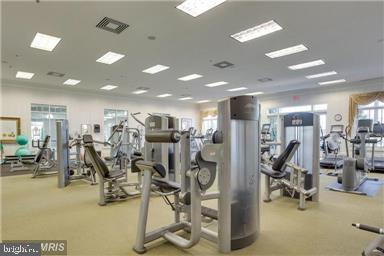 State of the Art Fitness Center - 20505 LITTLE CREEK TER #203, ASHBURN