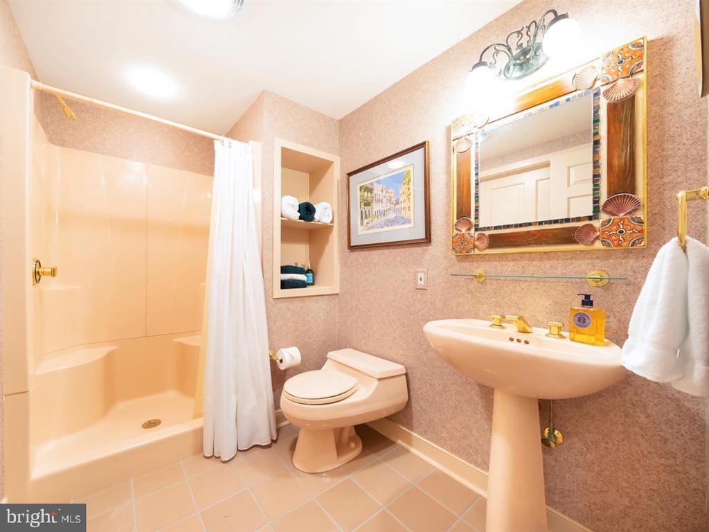 Lower Level Full Bath - 6072 WHITE FLINT DR, FREDERICK