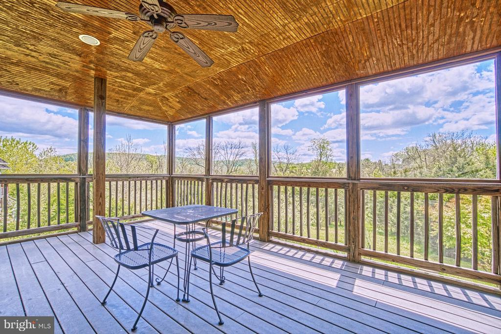 Panoramic Mountain Views from Screened Porch - 40985 REDWING SONG LN, LOVETTSVILLE