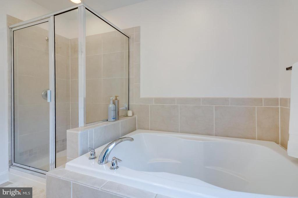 Separate tub and shower. - 1065 MOUNTAIN VIEW RD, FREDERICKSBURG