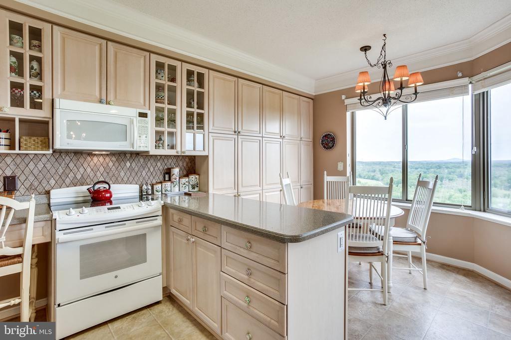 Kitchen with tons of pantry storage - 19355 CYPRESS RIDGE TER #1118, LEESBURG