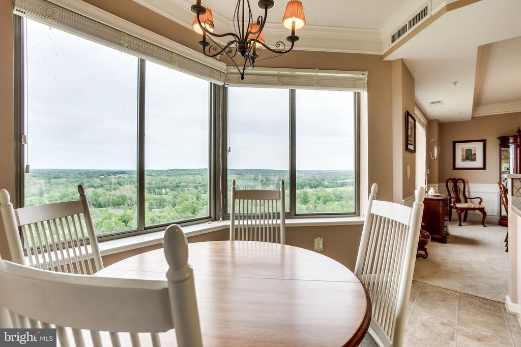 Beautiful views from your breakfast table - 19355 CYPRESS RIDGE TER #1118, LEESBURG