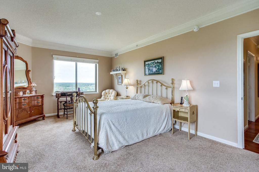 Master room also look s out to mountains - 19355 CYPRESS RIDGE TER #1118, LEESBURG